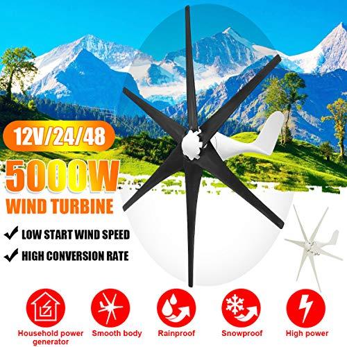 TQ 5000W Windgenerator 12V / 24V / 48V 6 Blatt-Schwarz-Windkraftanlagen Horizontale Startseite Powers Windmühle Energieanlagen Lade,24v