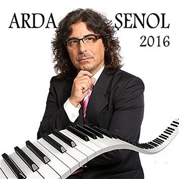 Arda Şenol 2016