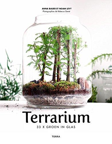 Terrarium: 33 x Groen in glas