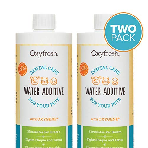 Oxyfresh Premium Pet Dental Care Solution Pet Water Additive: Best way to eliminate bad dog breath and cat breath - Fights tartar and plaque - So easy, just add to water! Vet recommended! 16 oz.