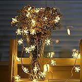 Luci fiabesche a led luci natalizie, luci natalizie, luci fiocchi di neve, per decorazioni per albero di Natale luci stringa usb 3m30 led