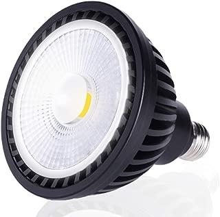 Best 12 volt led pool light bulb Reviews
