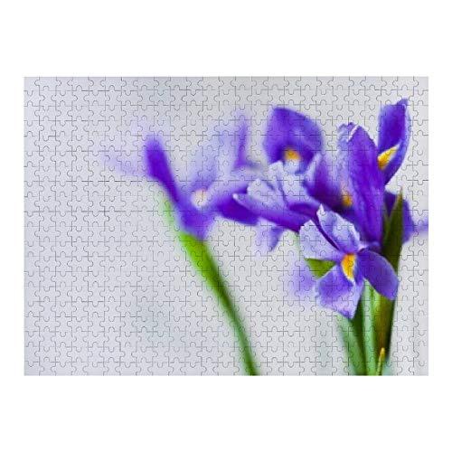 Flores de iris japonesas sobre la luz - 500 rompecabezas para adultos y niños de 12 años en adelante, varios