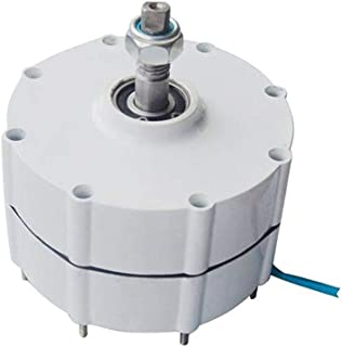 TOPQSC 600r/m 100W 12V Generador de Imán Permanente y