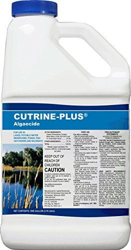 Applied Biochemists 38005901015 76513 Cutrine-Plus Professional Strength Aquatic Algaecide, 1 gal