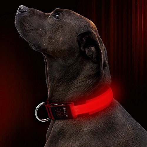 Illumifun LED Dog Collar, USB Rechargeable Lighted Dog Collar, Nylon Webbing Glowing Safety Dog Collar Make Your Dogs Safe& Seen Walking at Night(Red, Large)