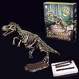 LyGuy Descubre El Kit De Dinosaurios Huesos Esqueléticos Modelo Arqueología De Excavación Juguete Regalo para Niños Descubre El Modelo De Dinosaurio