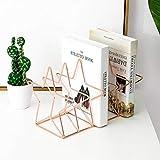N\C Xin Revistero - Revista del Sostenedor del Metal, Diseño Compacto Decorativo Periódico Cesta For Suelo Tabla De Montaje En Pared, Los 26 * 18 * 17.5CM, Color Rosa En Oro Xin