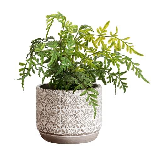 Plant Pots Indoor 7 Inch Pot - Modern Planter Pots for Indoor Plants- Concrete Flower Pota- Large Cement Planter Pots with Drainage- Decorative Plant Pot for Succulents- White and Grey Planter Floral