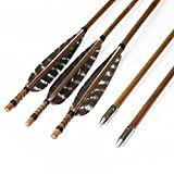 Huntingdoor 12 Pack Pheasant Turkey Feather Bamboo Shaft Arrows Archery with Point for Recurve Bow and Longbow