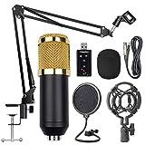 YMJJ Kit De Micrófono De Suspensión Profesional, Conjunto De Micrófono De Condensador, Grabar Youtube/Entrevista/Videoconferencia/Podcast/iPhone/ASMR