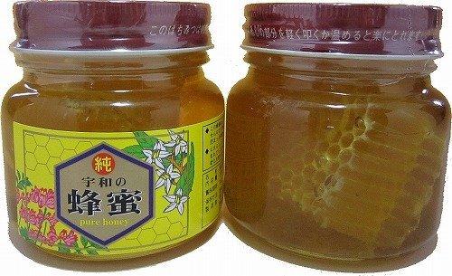愛媛のみかん夢果実 (宇和養蜂) 生はちみつ 非加熱 天然 巣みつ(コムハニー)入り百花蜂蜜300g