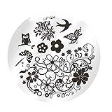 LEVEL GREAT Nail Art Flower Estampa el Esmalte de uñas Plantilla de la Placa del Sistema de Herramienta de Bricolaje Stamper Kit de diseño de la manicura Herramientas Mezclar diseños