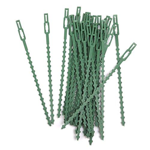 Multifonction r/éutilisable en plastique attaches r/églables pour plantes