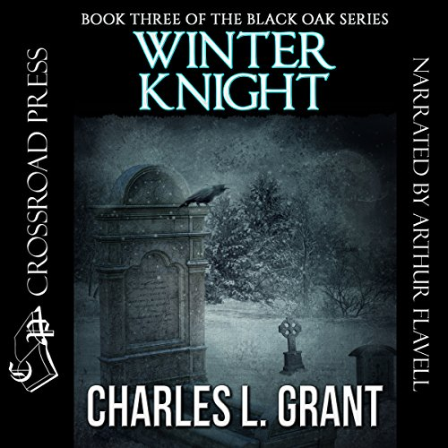 Winter Knight audiobook cover art
