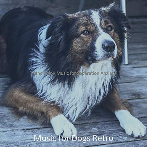 Music for Dogs Retro