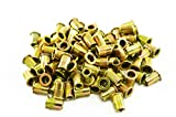 Astro Pneumatic Tool RN14 100-Piece 1/4-20 Steel Rivet Nuts...