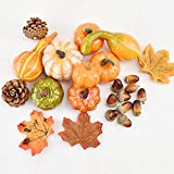 CrazyCharlie 50pcs Mixed Artificial Pumpkins Maple Leaves Pine Cones Acorns for Halloween Harvest Party Home Decoration Thanksgiving Day