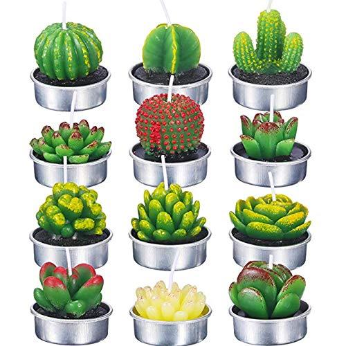12 velas verdes para plantas de desierto en forma de plantas, para San Valentín, fiestas, bodas, decoración del hogar, regalos, estilo aleatorio