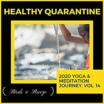 Healthy Quarantine - 2020 Yoga & Meditation Journey, Vol. 14