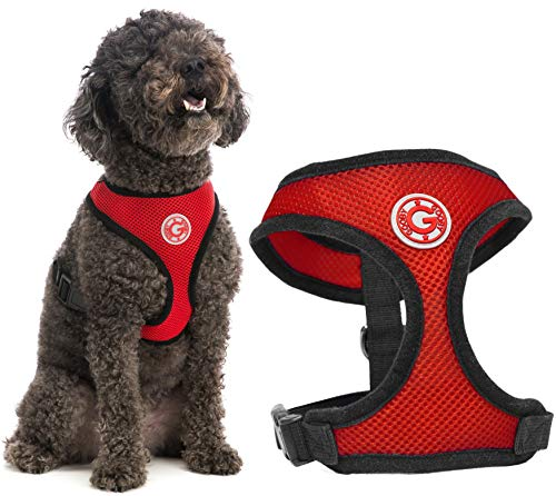 Gooby Dog Harness - Red, Medium - Soft Mesh Head-in Small Dog Harness with Breathable Mesh - Perfect on The Go Mesh Harness for Small Dogs or Cat Harness for Indoor and Outdoor Use