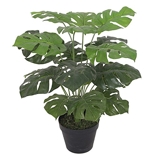 Leaf Planta Monstera Artificial de 60 cm en Maceta Negra