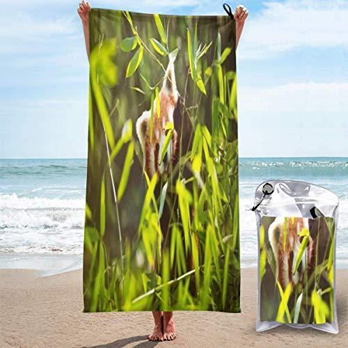 Toalla de baño de microfibra de secado rápido, panda joven en hojas de bambú, playa y viajes, buena absorción de agua y bolsa de compresión, 80 cm x 130 cm