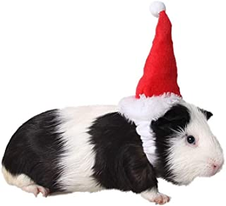 Amakunft Small Animal Hat, Guinea Pig Birthday Hat Cat Christmas Holiday Hat Costume Accessory for Hamster Squirrel Chinchilla