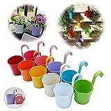 GIOVARA Lot de 10 Pots de Fleurs à Suspendre en métal avec Trou de Drainage Crochet Amovible Assortiment de Couleurs