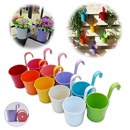 GIOVARA Metal Flower Pot Vase Bucket Hanging Garden Planter with Drainage Hole, Balcony Home Decor, Detachable Hook (10 Pcs with Assorted 10 Colours)