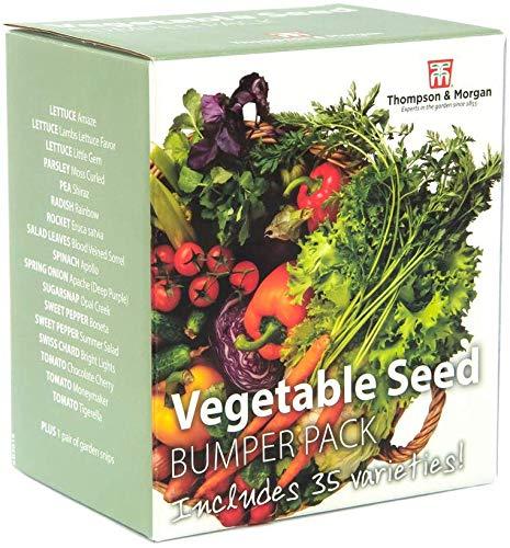 Gemüse Samen Box Puffer Packung Enthält 35 Verschiedene Sorten Salat Tomate Möhre Blätter Plus 1 Gratis Paar von Garten Blechschere, Ideales Geschenk, 1 X Thompson und Morgan