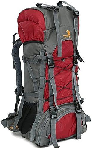 AaaSue Sac d'alpinisme Professionnel Haute capacité-60l Mulit-funcation Sports de Plein air Camping Sac à Dos de Randonnée Sac d'alpinisme pour Trekking