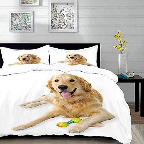 993 Golden Retriever,Pet Dog Laying Down with Toy Friendly Domestic Puppy Playful Companion,Multico,Microfibre Duvet Cover Set 230 x 220cm with 2 Pillowcase 50 X 80cm