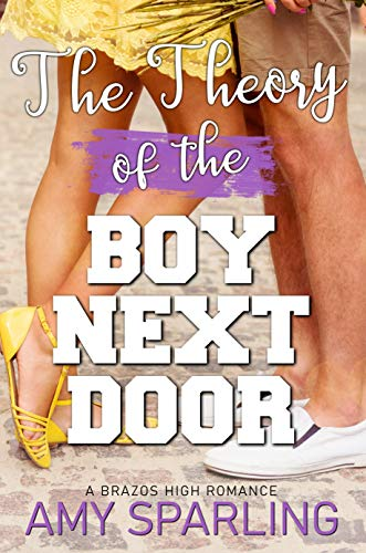 Book Cover for The Theory of the Boy Next Door