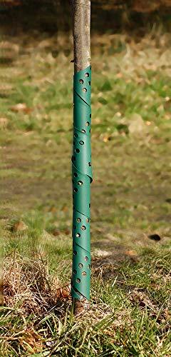 Grüne Baumspirale für Stammschutz und Rindenschutz gegen Wildverbiss und Fraßschäden, 75 cm hoch - licht- und luftdurchlässig, mitwachsend, wetter- und temperaturbeständig