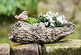 Pflanzer Baumstamm mit Vögelchen, rustikale Gartendeko, Pflanzschale, Blumentopf, Pflanztopf