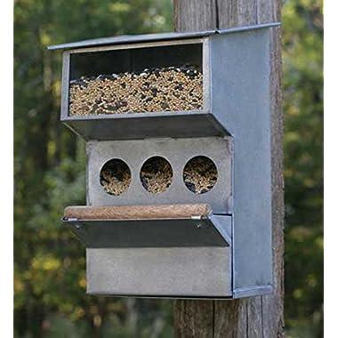 Cute Garden Decor - Country Farmhouse Style Bird Feeder