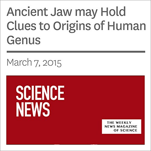 Ancient Jaw May Hold Clues to Origins of Human Genus audiobook cover art