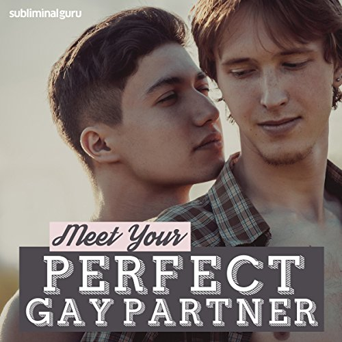 Meet Your Perfect Gay Partner audiobook cover art