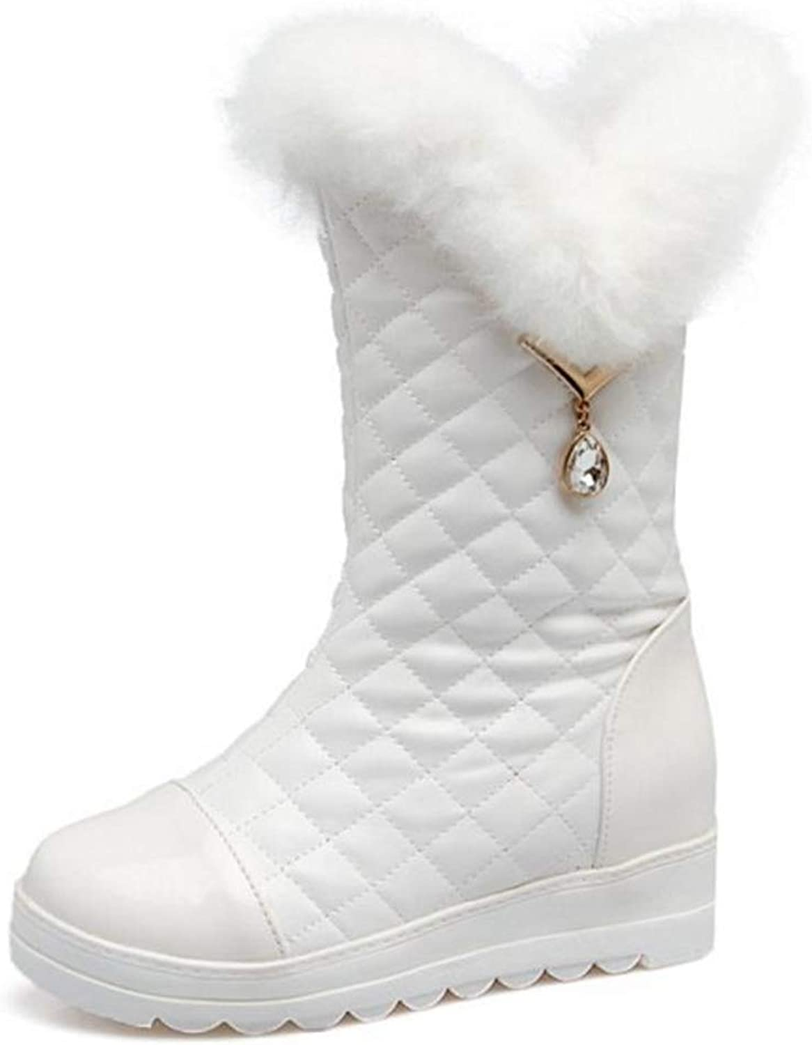 Webb Perkin Women Winter shoes Thick Fur Plush Inside Mid Calf Boots Thick Plaform Wedges Boots Fashion Snow Boots for Women