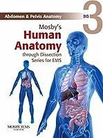 Abdomen & Pelvis Anatomy [DVD]