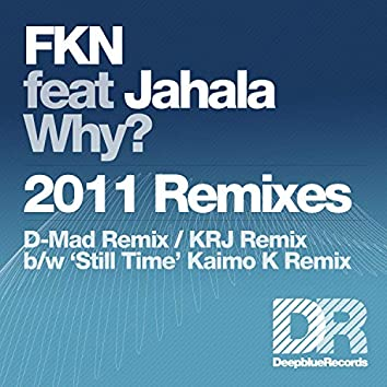 Why? - 2011 Remixes