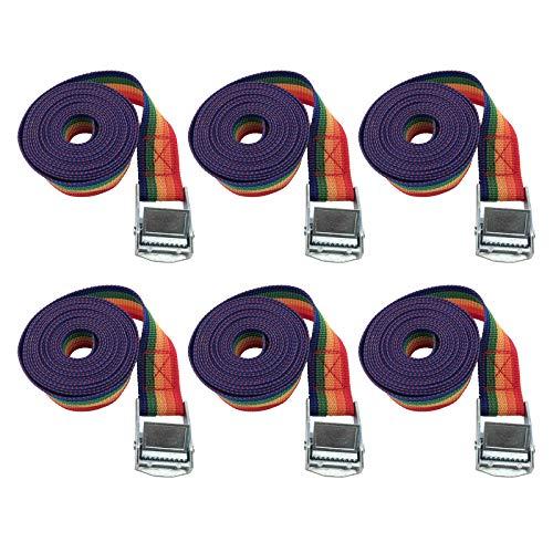 6Pcs Cinchas De Amarre Trinquete Profesional, con Correas con Hebilla Metálica Cincha De Carga, para Portabicis Coche Accesorios Kayak con Carraca Pulpos para Baca (25 mm * 4m, Colores del Arcoiris)