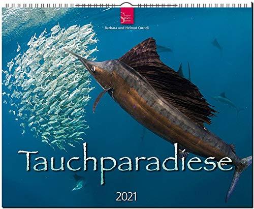Tauchparadiese: Original Stürtz-Kalender 2021 - Großformat-Kalender 60 x 48 cm