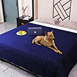 Snagle Paw Waterproof Dog Couch Cover,Washable Puppy Pad,ReusableDog Bed Cover with Non-Slip Back,Pet Furniture Bed and Sofa Cover,Water-Resistant Pee Pads for Dogs (52'x82', Navy)