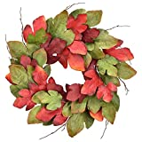 Cloris Art Fall Maple Leaves Wreath for Front Door, Farmhouse Artificial 22-24 Inch Red Green Wreaths for Home Office Wedding Party Holiday Indoor Outdoor Wall Decor