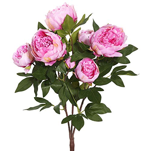 Vickerman 23'' Everyday Artificial Cerise Peony Bush - Faux Indoor Floral Arrangement - For Home Or Office Decor - Maintance Free