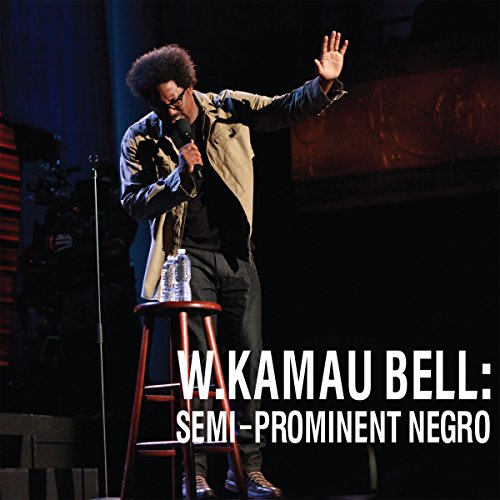 Semi-Prominent Negro audiobook cover art