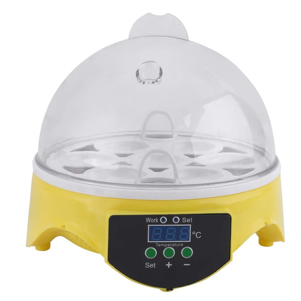 Egg Incubator 7 Eggs Credence Digital Hatcher Super Special SALE held Tem Mini Poultry