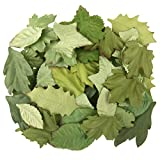 Darice Green, Leaf Floral Embellishments, 60 Pack